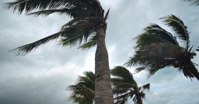 Preparing for High Winds: How to Protect a Home from Damage
