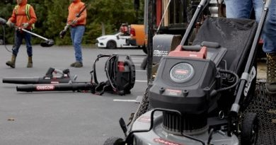 Oregon 120V Professional Series(TM) Grows with 21″ Mower & Handheld Blower